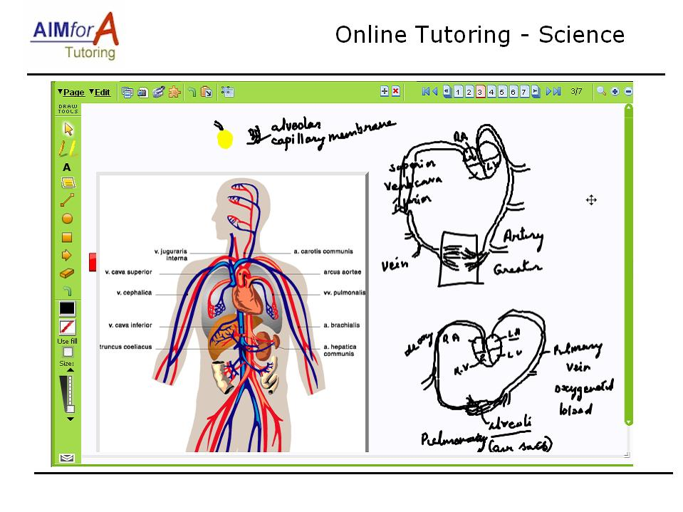 maths test online gcse higher